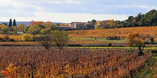 Château La Salade Saint Henri est un domaine viticole qui produit des vins Pic Saint Loup en rouge et rosé sur la commune de Saint Mathieu de Tréviers.(® SAAM-fabrice Chort)