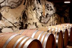 Château La Salade Saint Henri produit des vins AOC Pic Saint Loup . Ici une cave de vieillissement de vin en fûts de chêne.(® SAAM-fabrice Chort)
