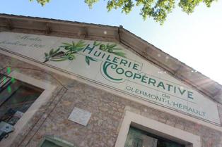 La boutique Olidoc de  l'Huilerie Confiserie Coopérative oléicole de Clermont l'Hérault (crédits photos : networld-Fabrice Chort)