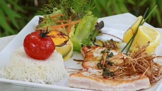 Le Delphis Lattes annonce du Poisson le vendredi midi, à déguster en terrasse avec les beaux jours (® networld-fabrice chort)