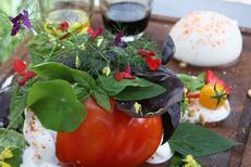 L'Aromate Palavas un restaurant de produits frais présente des plats savoureux et soignés au centre-ville (® l'aromate)