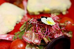 Restaurant l'Insolite Mauguio | Carte et Menus (® SAAM fabrice Chort)