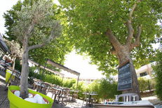 Le Delphis Lattes restaurant présente une grande terrasse sous les arbres (® networld-fabrice Chort)
