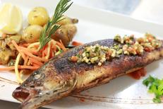 Le Petit Lézard Palavas Restaurant et sa cuisine à base de poissons ici un loup de 500 grammes (® networld-fabrice chort)